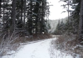 proHNS set to design new Juneau subdivision